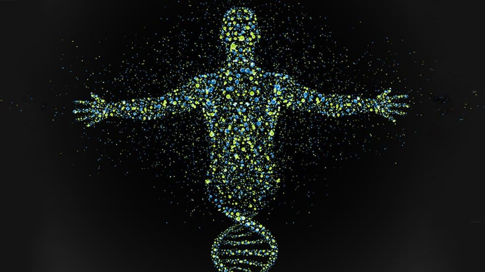 DNA structure & human figure CGI image. Pint of Science Rare Disease