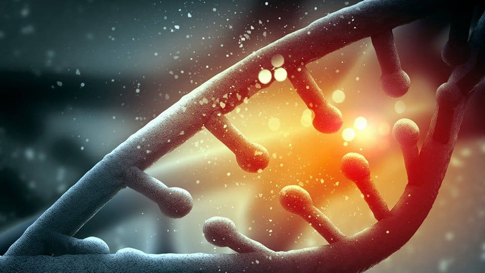 Rare disease diagnostics: Bringing genomics to the clinic