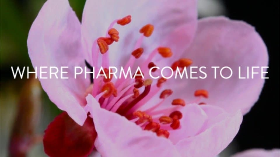 "Eyeforpharma Barcelona 2020 photo with text saying ""Where Pharma comes to life"""